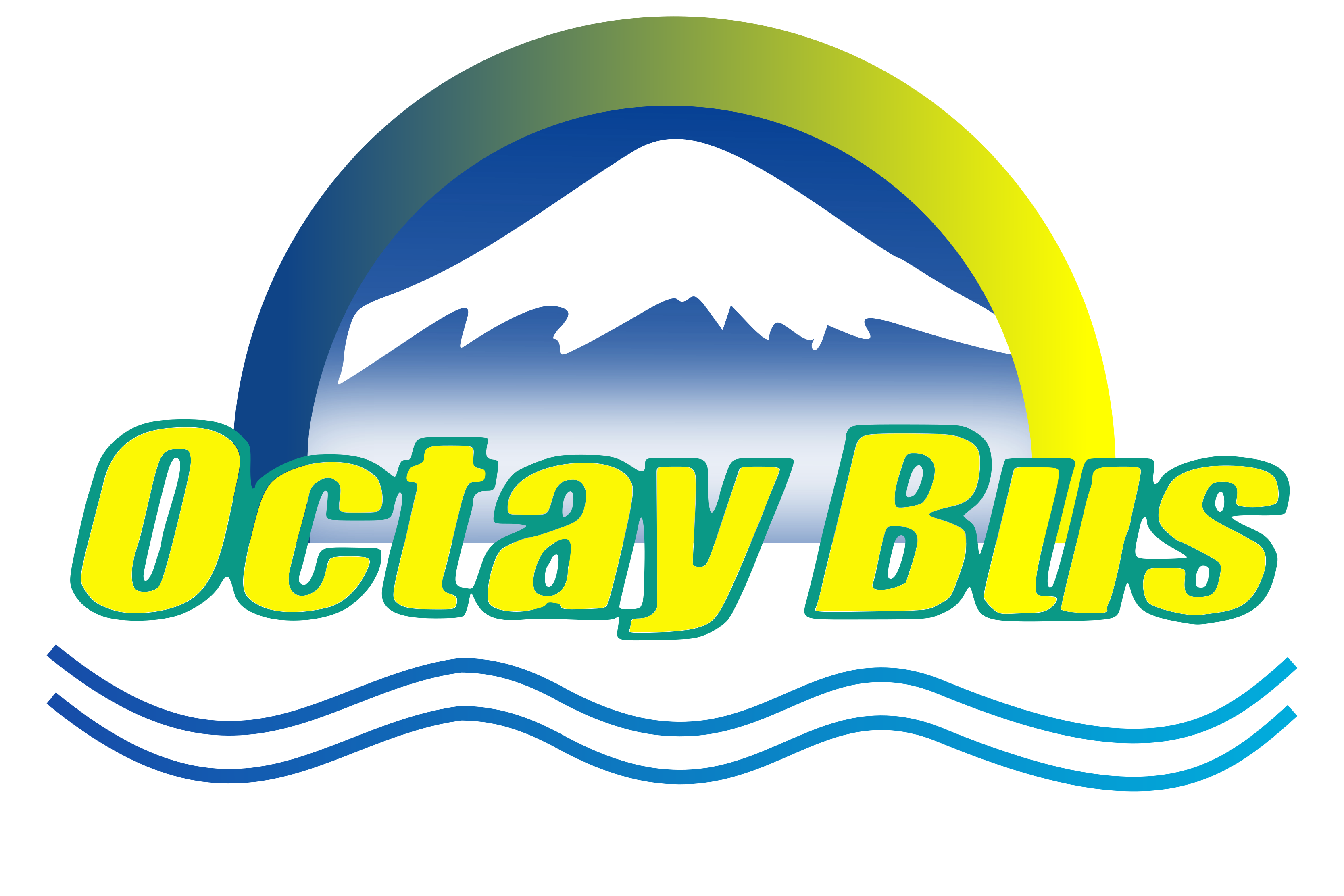 Octay Bus